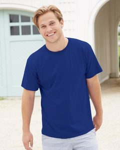 Hanes 5280 - ComfortSoft® Heavyweight T-Shirt