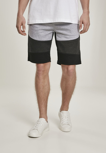 Southpole SP1543 - Color Block Tech Fleece Shorts